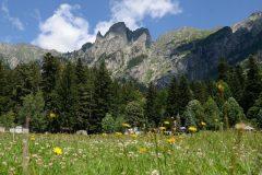 Kirilova meadow | Lucky Bansko