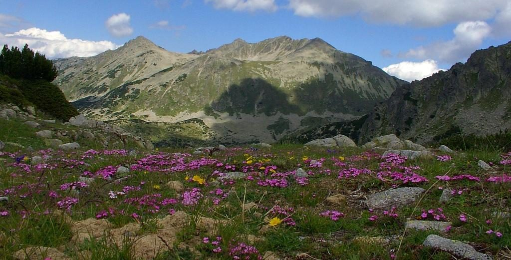 Park areas in Pirin mountain