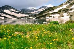 Visitor center of Pirin National Park